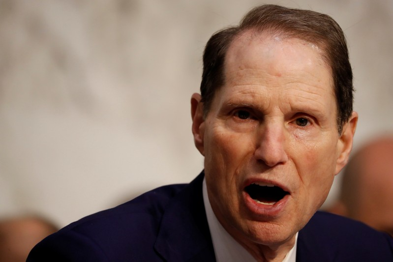 Sen. Ron Wyden (D-OR) speaks during a markup on the