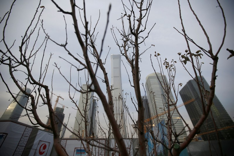 A tree is pictured in front of buildings in Beijing's central business area