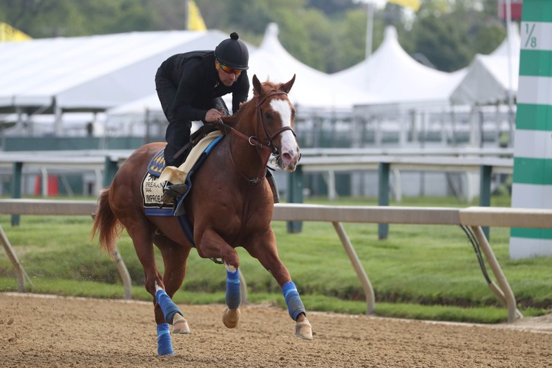 FILE PHOTO: Horse Racing: Preakness Workouts