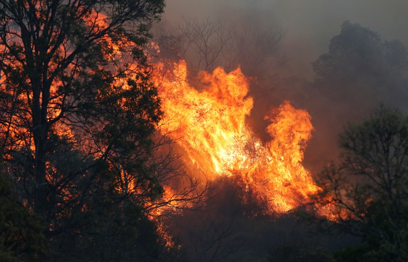 A bushfire rages near the rural town of Canungra in the Scenic Rim region of South East Queensland