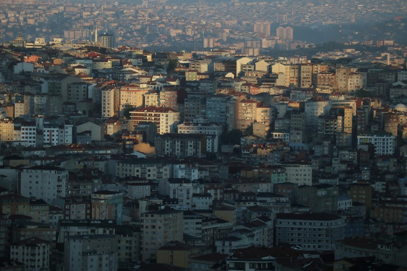 FILE PHOTO - Early morning sunlight cuts across residential housing that stretches to the horizon of Istanbul's skyline in Turkey