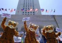 California bans fur statewide, but the multibillion-dollar industry won't be easy to kill