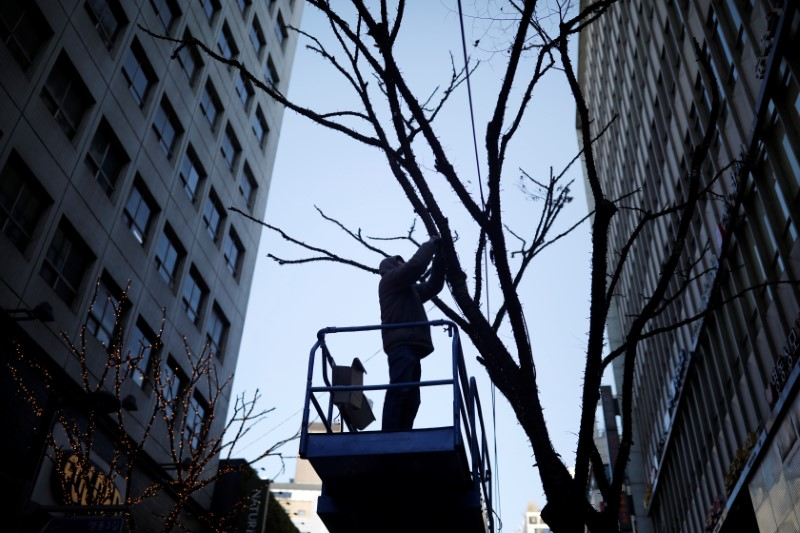 A man works on a tree at Myeongdong shopping district in Seoul