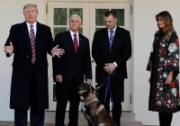 Hero Dog Conan Visits White House