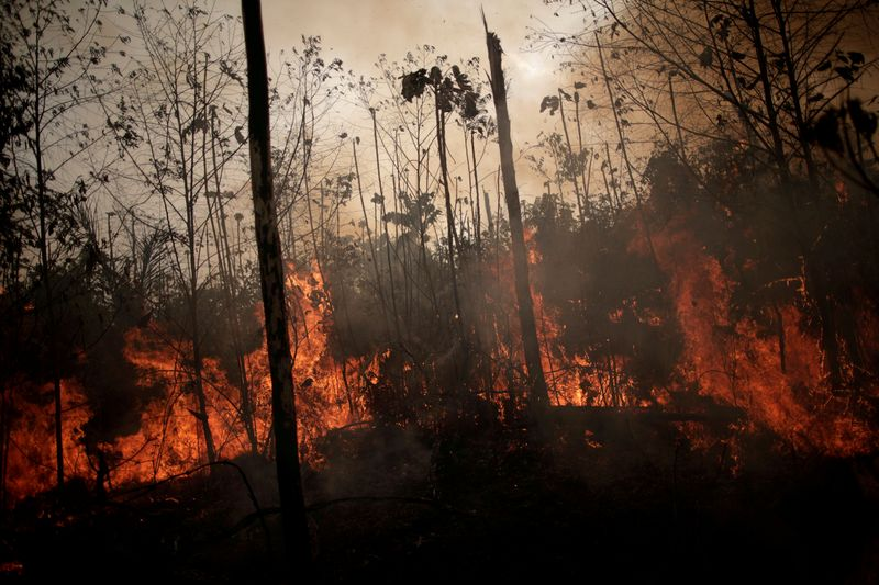 FILE PHOTO: A burning tract of Amazon jungle is seen while as it is being cleared by loggers and farmers in Porto Velho