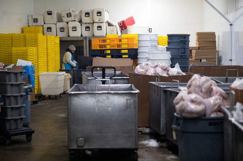 Turkeys are distributed ahead of Thanksgiving