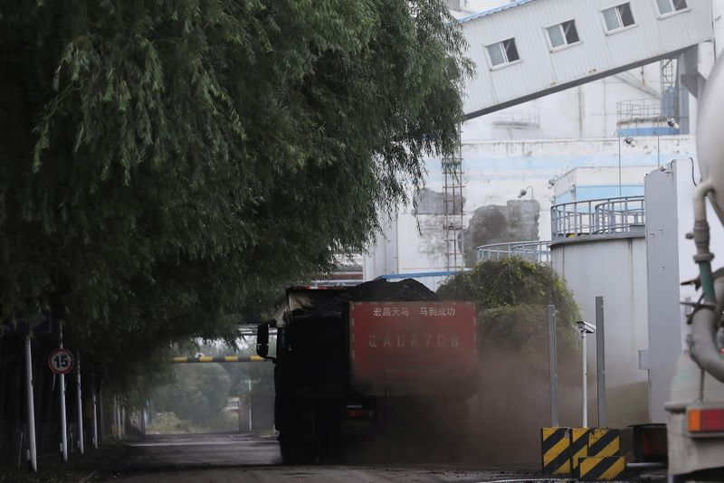 FILE PHOTO: Truck transports coal at a coal-fired power plant in Shenyang, Liaoning