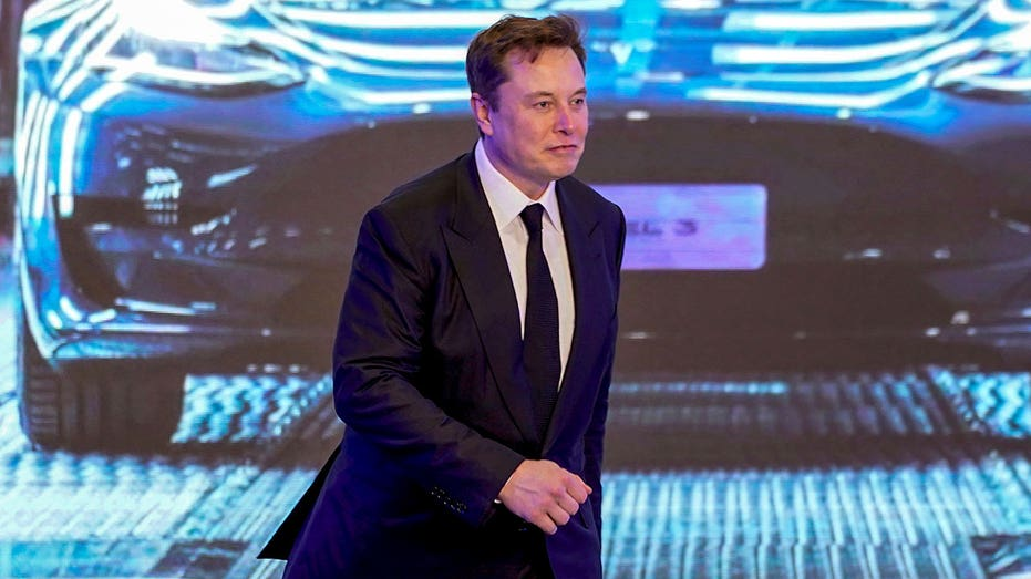 elon-musk-walks-by-tesla-picture-in-china