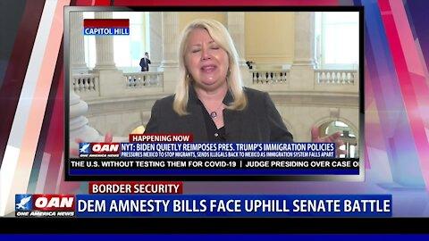 Dem amnesty bills face uphill Senate battle